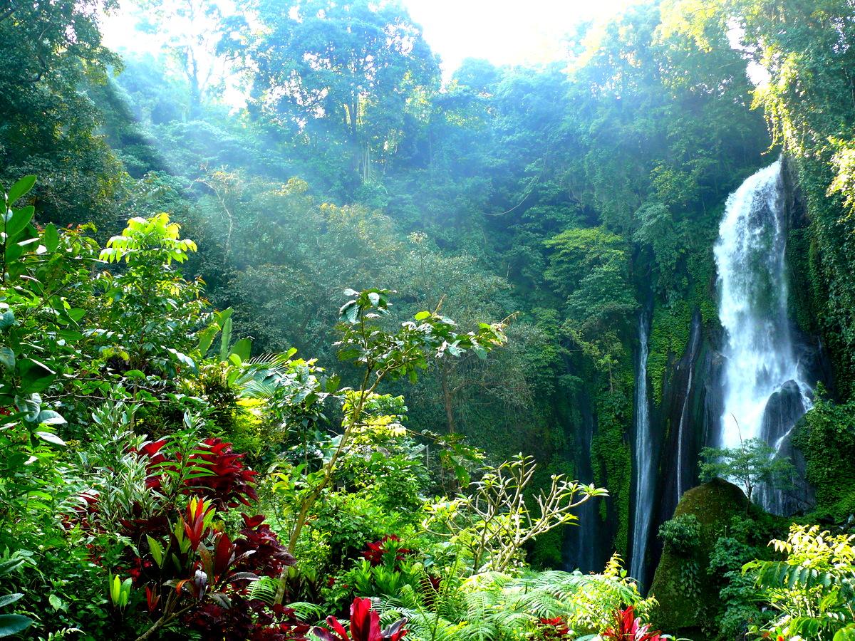 Bali Island Adventure Tours